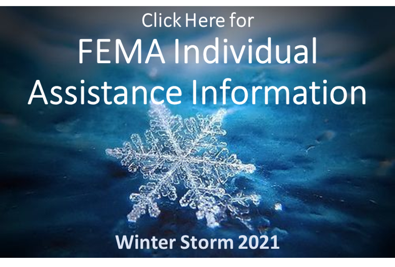 Winter Storm 2021 Individual Disaster Assistance Information